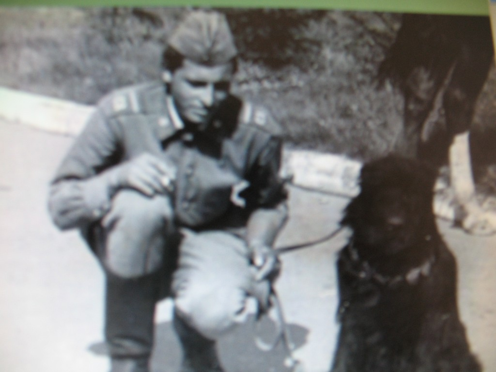 The Soviet War Dogs of WWII
