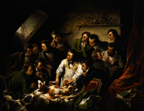 Dissecting the Living: Vivisection in Early Modern England
