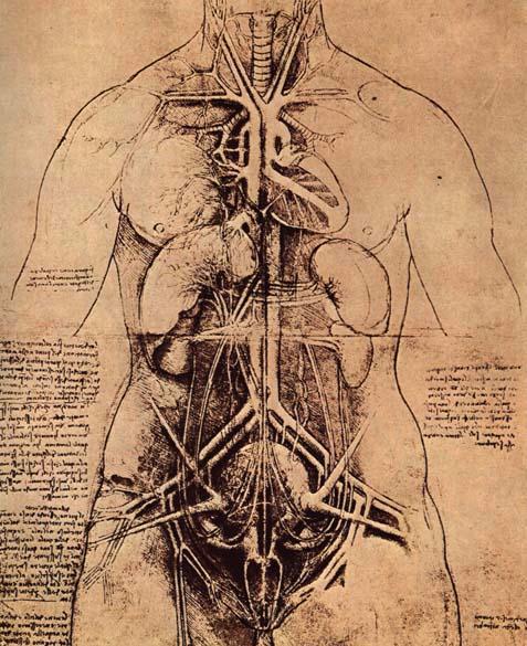 Imaginary body parts