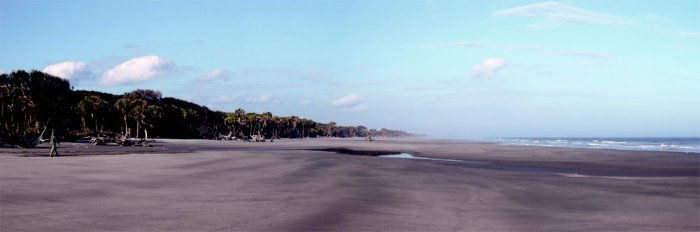 St. Catherines Island Beach Panorama