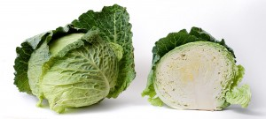 Cabbage_and_cross_section_on_white