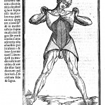 L0013262 Muscles - Berengarius 1521 Credit: Wellcome Library, London. Wellcome Images images@wellcome.ac.uk http://wellcomeimages.org Muscles Woodcut 1521 Commentaria cum Amplissimis Additionibus Super Anatomia Mundini una cum textu ejusdem in pristinum et Verum Nitorem Redacto Jacobus Berengarius Carpensis Published: 1521 Copyrighted work available under Creative Commons Attribution only licence CC BY 4.0 http://creativecommons.org/licenses/by/4.0/
