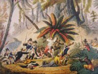 How a Mosquito Defeated Napoleon – and Freed Haiti