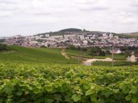 Champagne's Three Slopes, Saint-Evremond, and the Invention of Snobbery
